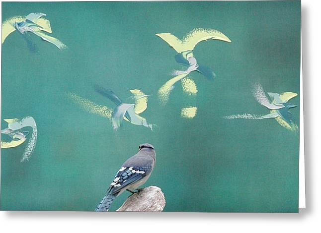 Pensive Greeting Cards - Chickadee on Canvas Blue Jay on Green Greeting Card by Dave Markman