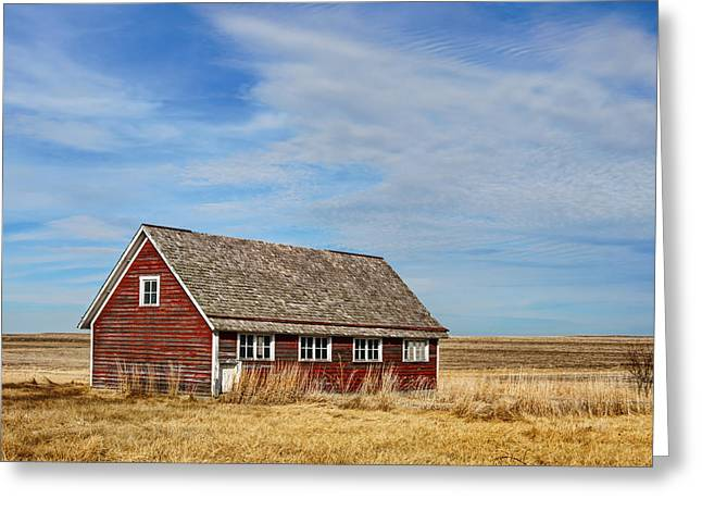 Outbuildings Greeting Cards - Chicken Coop #2 Greeting Card by Nikolyn McDonald