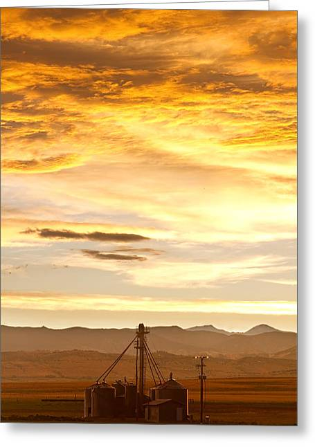 Rocky Mountain Foothills Greeting Cards - Chicken Farm Sunset 1 Greeting Card by James BO  Insogna