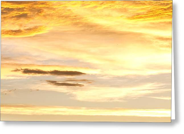 Chicken Farm Sunset 1 Greeting Card by James BO  Insogna