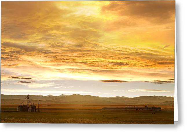Chicken Farm Sunset 2 Greeting Card by James BO  Insogna