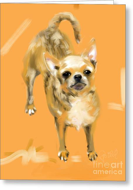 Chihuahua Greeting Cards - Chihuahua Joey Greeting Card by Go Van Kampen