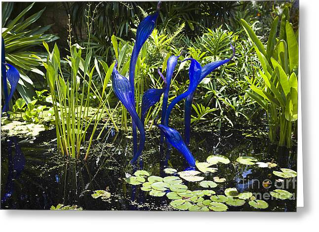 Gulf Coast States Greeting Cards - Chihuly Greeting Card by Juan  Silva