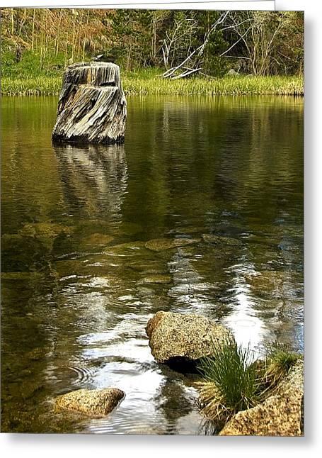 Eastern Sierras Fishing Greeting Cards - Childhood Memories Greeting Card by Aron Kearney Fine Art Photography
