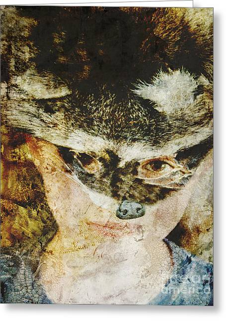 Raccoon Digital Art Greeting Cards - Childs Play Greeting Card by Nancy TeWinkel Lauren