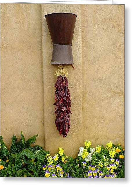 Chilies Greeting Cards - Chili Wall Greeting Card by Bill Morgenstern