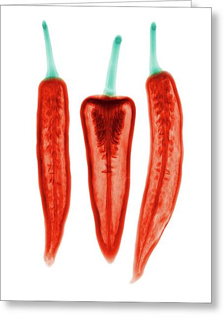 Chilli Peppers Greeting Card by Brendan Fitzpatrick