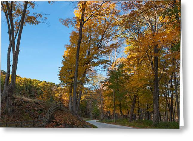 Scenic Drive Greeting Cards - Chillin on a Dirt Road Square Greeting Card by Bill  Wakeley