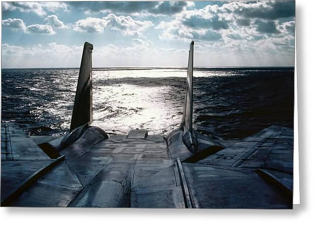 Grumman Greeting Cards - Chilling Out Greeting Card by Peter Chilelli
