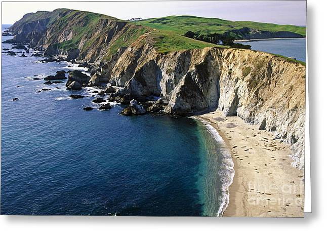 Best Sellers -  - Elephant Seals Greeting Cards - Chimney Rock Vista Greeting Card by George Oze