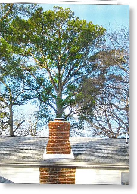 Michael Pyrography Greeting Cards - Chimney Tree Greeting Card by Michael Morgan