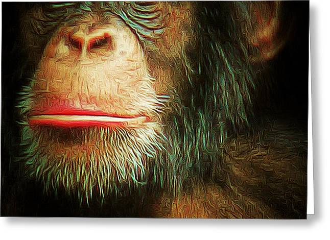Chimpanzee Greeting Cards - Chimp 20150210brun v3 square Greeting Card by Wingsdomain Art and Photography