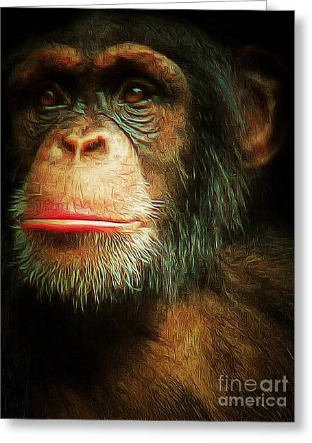 Human Being Greeting Cards - Chimp 20150210brun v3 Greeting Card by Wingsdomain Art and Photography