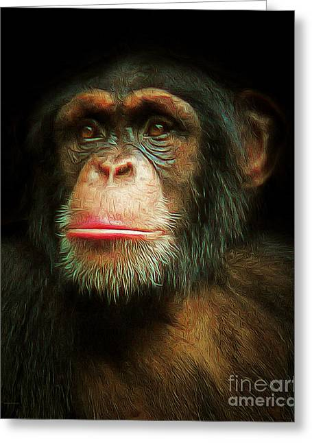 Chimpanzee Greeting Cards - Chimp 20150210brun Greeting Card by Wingsdomain Art and Photography