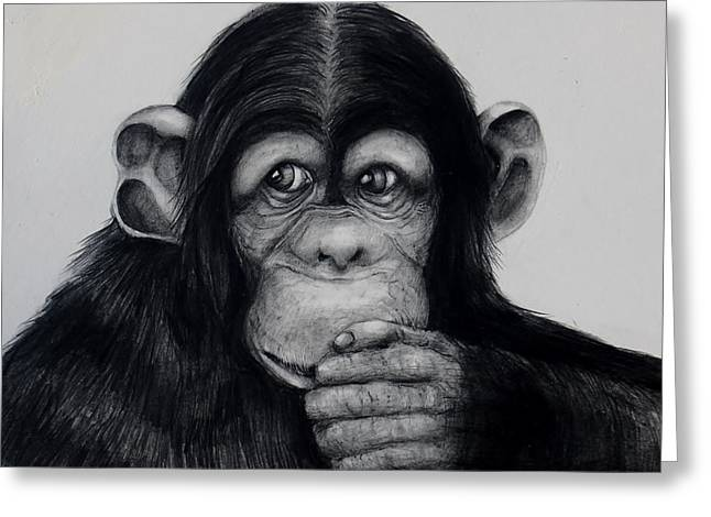 Contemplative Drawings Greeting Cards - Chimp Greeting Card by Jean Cormier
