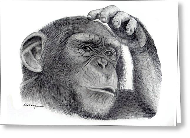 Mary Mayes Greeting Cards - Chimp Greeting Card by Mary Mayes