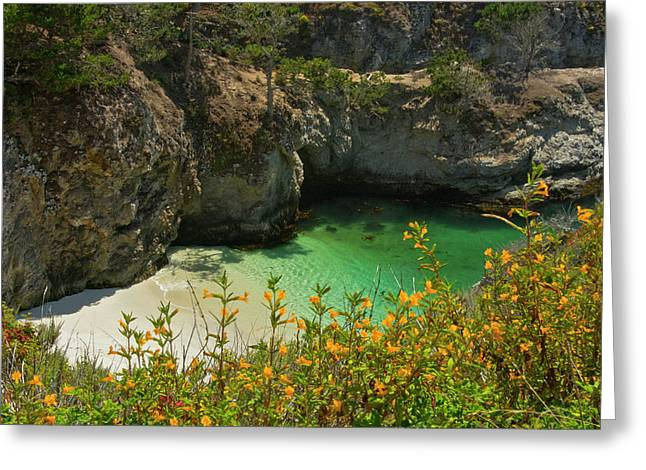 China Cove And Beach, Point Lobos State Greeting Card by Michel Hersen