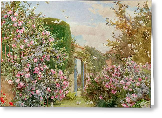 China Roses Greeting Card by Alfred Parsons