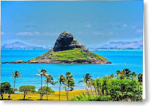 China Beach Greeting Cards - Chinamans Hat Island Greeting Card by Cheryl Young