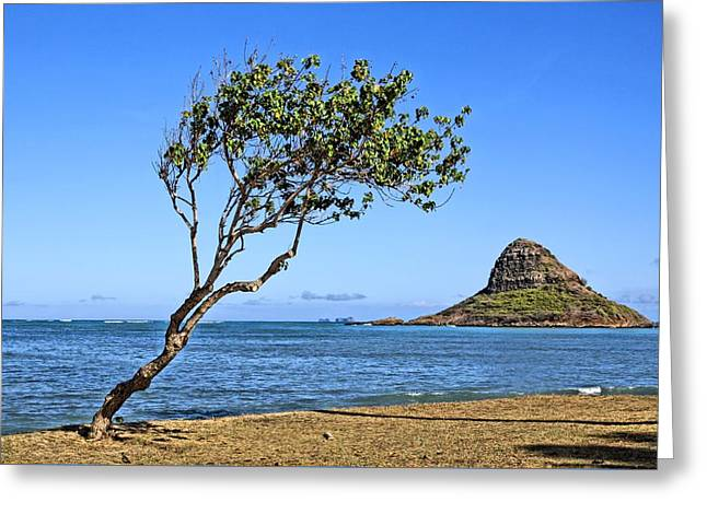 China Beach Greeting Cards - Chinamans Hat Oahu Greeting Card by DJ Florek