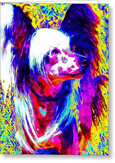Happy Dogs Cute Dogs Greeting Cards - Chinese Crested Dog 20130125v1 Greeting Card by Wingsdomain Art and Photography