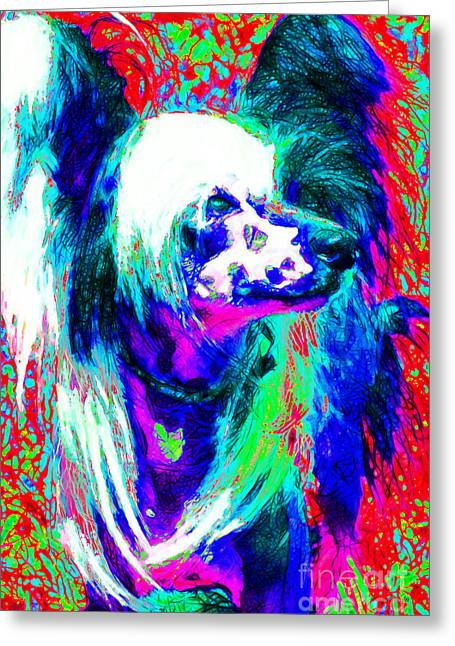 Happy Dogs Cute Dogs Greeting Cards - Chinese Crested Dog 20130125v3 Greeting Card by Wingsdomain Art and Photography