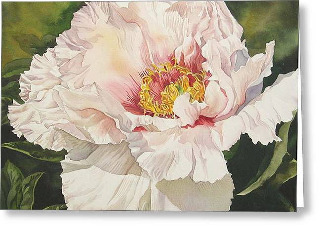 Alfred Ng Art Greeting Cards - Chinese tree peony Greeting Card by Alfred Ng