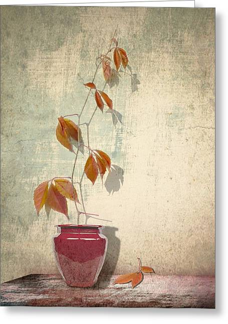 Interior Still Life Greeting Cards - Chinese Vase  Greeting Card by Artskratches