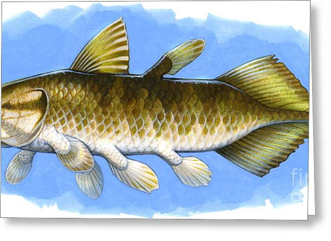 Illustration Technique Digital Art Greeting Cards - Chinlea, An Extinct Lobe-finned Fish Greeting Card by H. Kyoht Luterman
