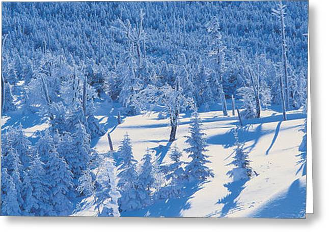Snowy Day Greeting Cards - Chino Nagano Japan Greeting Card by Panoramic Images