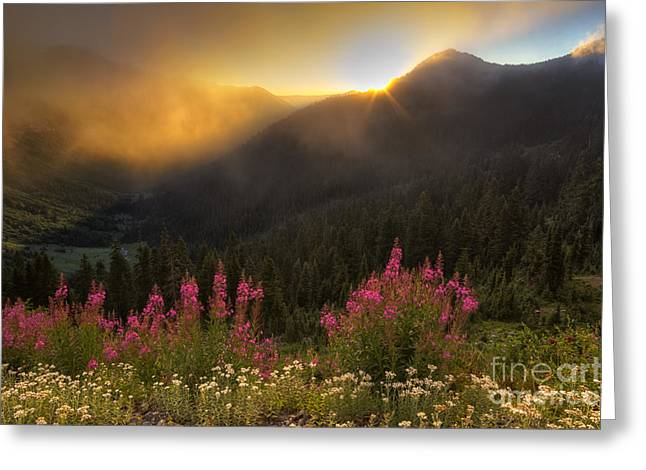 Chinook Greeting Cards - Chinook Pass Sunrise II Greeting Card by Mark Kiver