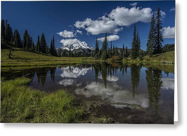 Public Issue Greeting Cards - Chinook Pass with Mount Rainier Greeting Card by Mike Sedam