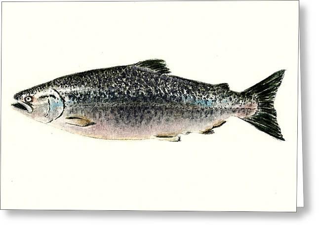 Chinook Salmon Greeting Card by Michael Vigliotti