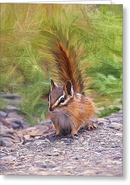 Bushy Tail Greeting Cards - Chipmunk Alert Digital Art Greeting Card by Sharon  Talson