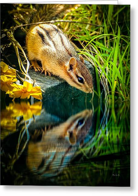Aged Greeting Cards - Chipmunk Reflection Greeting Card by Bob Orsillo