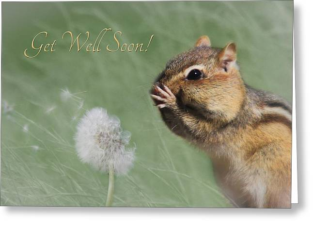 Get Well Soon Greeting Cards - Chippy Get Well Soon Greeting Card by Lori Deiter