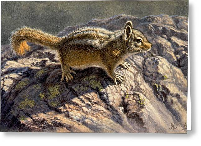 Chipmunk Greeting Cards - Chippy on the Rocks Greeting Card by Paul Krapf