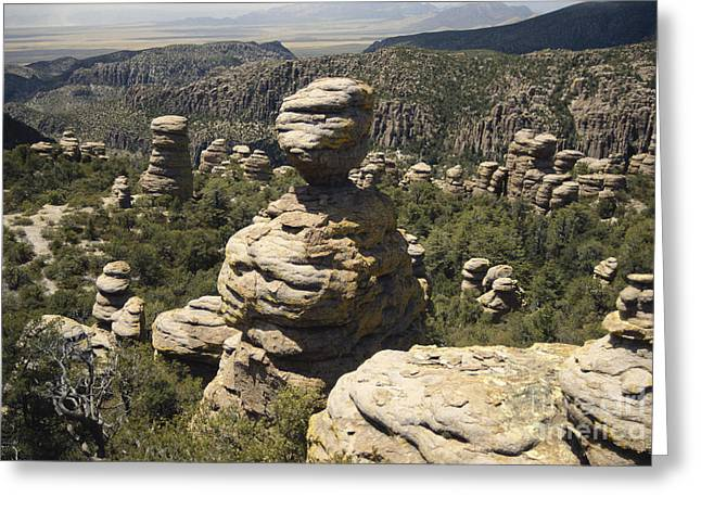 Hoodoos Greeting Cards - Chiricahua National Monument Greeting Card by Mark Newman