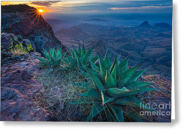 South Rim Greeting Cards - Chisos Dawn Greeting Card by Inge Johnsson