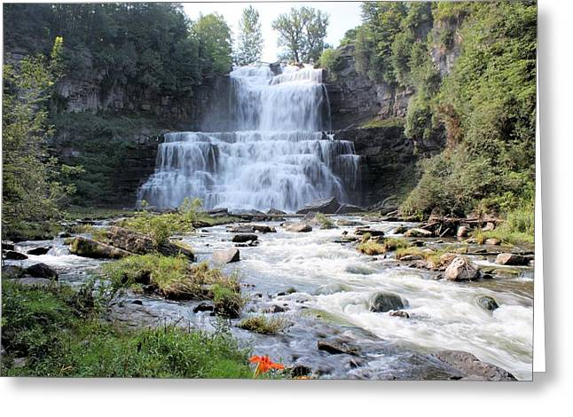 Fall Photographs Pyrography Greeting Cards - Chittenango Falls NY Greeting Card by Thomas Cassant