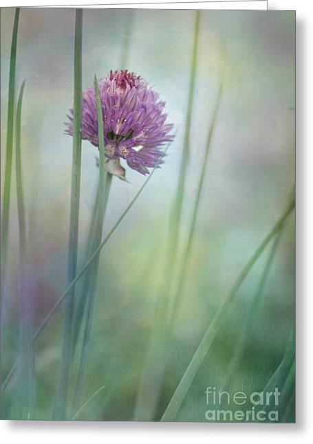 Green Chives Greeting Cards - Chive garden Greeting Card by Priska Wettstein