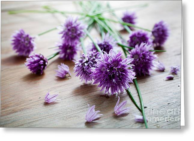 Green Chives Greeting Cards - Chives Greeting Card by Kati Molin