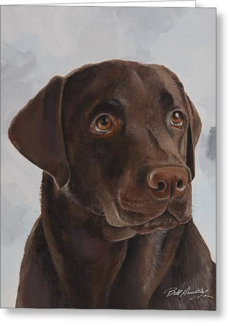 Chocolate Lab Greeting Cards - Chocolate Lab Greeting Card by Bill Dunkley