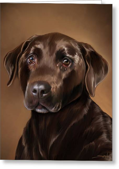 Chocolate Lab Greeting Card by Michael Spano