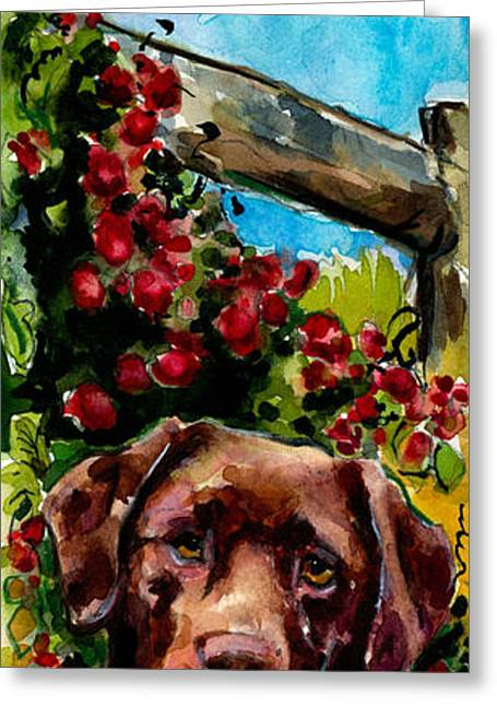 Brown Dogs Greeting Cards - Chocolate Raspberry Fields Greeting Card by Molly Poole