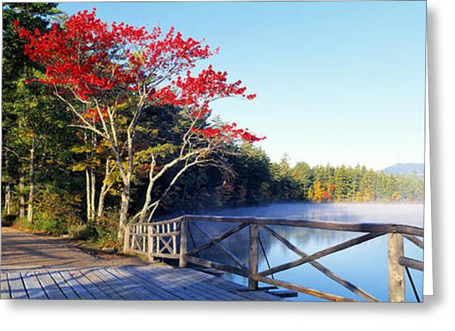 New Hampshire Leaves Greeting Cards - Chocorua Lake White Mountains National Greeting Card by Panoramic Images