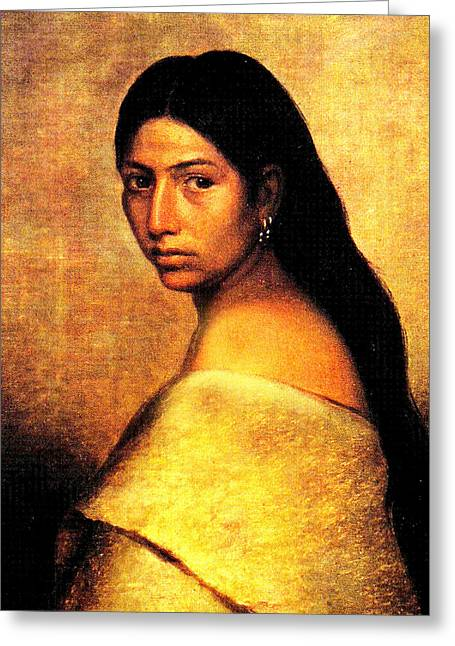 American Heritage Greeting Cards - Choctaw Belle Greeting Card by Phillip Romer