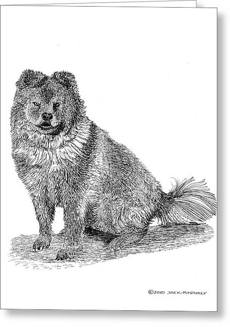 Breed Of Dog Drawings Greeting Cards - Chow Chow Woofy Greeting Card by Jack Pumphrey