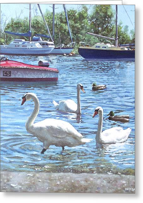 Boats In Water Greeting Cards - Christchurch Harbour Swans And Boats Greeting Card by Martin Davey
