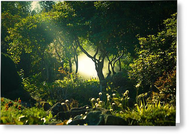 Motivational Poster Greeting Cards - Christchurh Botanic Gardens Greeting Card by Max Brudvig